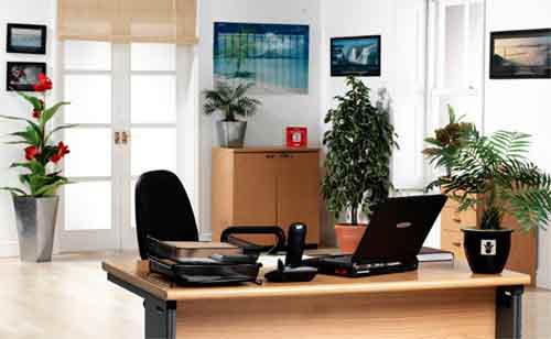 Bài trí phòng làm việc của người chủ quản