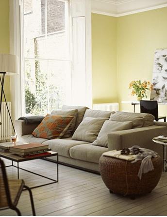 Màu sơn và nội thất cho gia chủ mệnh Mộc | ảnh 1