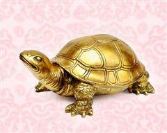 Vị trí đặt tượng rùa hợp phong thủy có thể hóa giải được sát khí