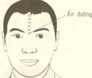 Xem tướng : Vận số qua khoảng cách 2 đầu lông mày